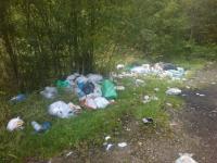 Новгородские активисты ОНФ прошлись по свалкам в Боровичском и Пестовском районах