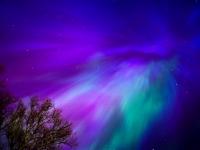 Сегодня ночью у новгородцев есть шанс увидеть северное сияние