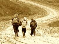 В Новгородской области нашли троих пропавших детей