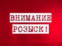 В Новгородской области продолжаются поиски троих пропавших людей