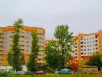 Активистки из Завокзального микрорайона поборолись с экспертами за Морозовский переезд