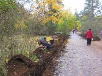 Боровичский парк благоустраивают, но опаздывают