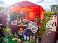 Фоторепортаж: «Яркие соседи: «Урожай – 2017» и Autosation»