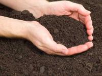 Новгородскую компанию «Белгранкорм» накажут за порчу земли