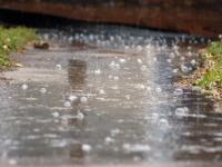 Прокуратура выявила причины размытия дорог в Окуловке. И это не бобры