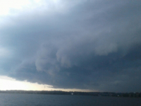 Штормовое предупреждение! В Новгородской области ожидается усиление ветра