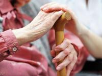 В Великом Новгороде и Боровичах открылись курсы по уходу за инвалидами и престарелыми
