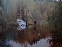 Видео: в Хвойнинском районе карстовые озёра отрезали две деревни от «большой земли»