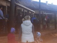 Волонтеров с пилой и топором приглашает на свой юбилей боровичский фонд помощи животным «Найда»