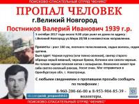 Волонтеры сообщают о пропаже пожилого новгородца Валерия Постникова