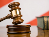 Бухгалтер лесхоза в Мошенском осуждена за то, что начисляла себе зарплату на больничном
