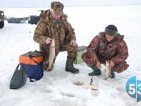 Эссе претендентов на руководство охотничьим хозяйством и рыболовством Новгородской области: часть 3