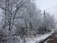 Фотофакт: в Крестцы пришла зима