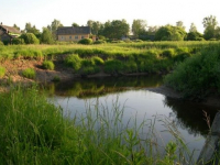 Ихтиологи оценили состояние форели в любытинской речке Белой