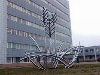 На новгородском «Акроне» выросли пятиметровые колосья  из металла