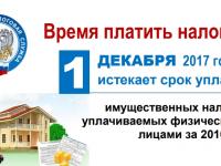 Новгородские налоговики напоминают про 1 декабря