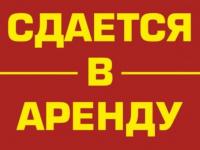 Новгородские власти надеются сдать в аренду речной причал по улице Щусева