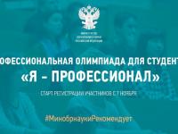 Новгородцы через участие в олимпиаде «Я — профессионал» могут начать карьеру в ведущих компаниях