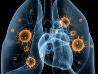 Новый очаг пневмонии выявлен в одной из новгородских школ