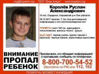 Пропавшего в Ленобласти ребенка ищут в квартирах всех осужденных за насилие