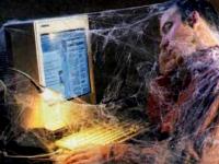 В Любытинском районе ждут либо быстрый интернет, либо признание муниципалитета отдаленным от сетей связи