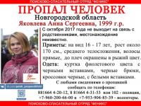 В Новгородской области и за ее пределами ищут девушку из Боровичского района