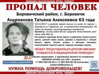 В Новгородской области ищут пенсионерку, пропавшую в Боровичах  неделю назад