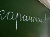В Новгородской области три школы закрыты на карантин полностью, ещё шесть - частично