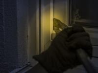 Житель Петербурга обокрал дачу земляка в Любытинском районе, прихватив с собой триммер, пылесосы и многое другое