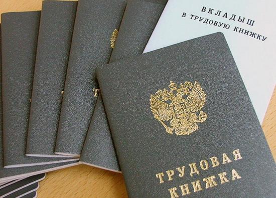 В Новгородской области спецкомиссия обсудила борьбу с незаконной занятостью