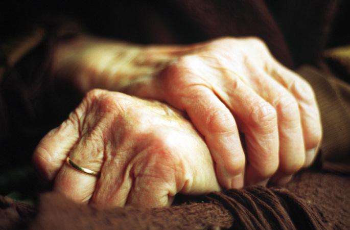 В Великом Новгороде обсудили перспективы пенсионной системы