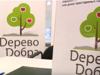 Андрей Никитин и Николай Подгузов приняли участие в акции «Дерево Добра»