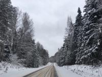 Андрей Никитин поделился с подписчиками «зимней сказкой»