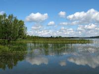 Андрей Никитин предлагает ввести курортный сбор для сохранения природы Валдая