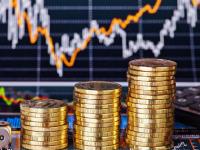 Эссе претендентов на руководство экономикой Новгородской области: часть 8