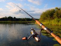 Эссе претендентов на руководство охотничьим хозяйством и рыболовством Новгородской области: часть 7