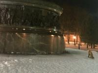 Фото: ночью в Новгородском кремле бродит лис-эстет
