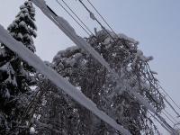 Новгородское МЧС опубликовало штормовое предупреждение