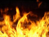 Почти пять часов спасатели боролись с огнем в деревне Боровичского района