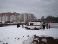Спасенная из водоема в Новгороде собака обрела пристанище