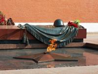 В этом году поисковики нашли в Новгородской области останки более 2600 красноармейцев