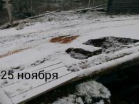 В Любытинском районе восстановленный мост не продержался и полгода