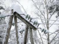 Жители четырех районов Новгородской области «вышли в свет»