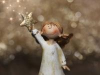 В Великом Новгороде завершилась молодежная рождественская акция «Пусть праздник в каждый дом придёт»
