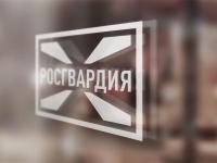 «Известия»:  десять тысяч сокращенных в ГИБДД рабочих мест передадут Росгвардии