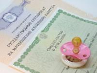 На Новгородчине появились первые желающие получать выплаты из маткапитала ежемесячно
