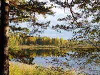 Сегодня – профессиональный праздник у сотрудников Валдайского национального парка и Рдейского заповедника