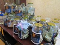 В Старой Руссе монетками собрали 70 тысяч рублей