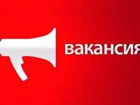 Актуальнаяпятерка новгородских вакансий. 20 февраля