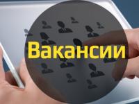 Актуальнаяпятерка новгородских вакансий. 22 февраля